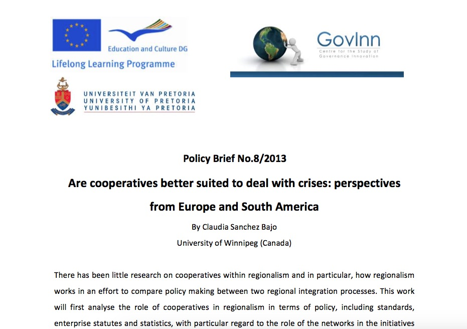 Claudia Bajo Policy Brief 8