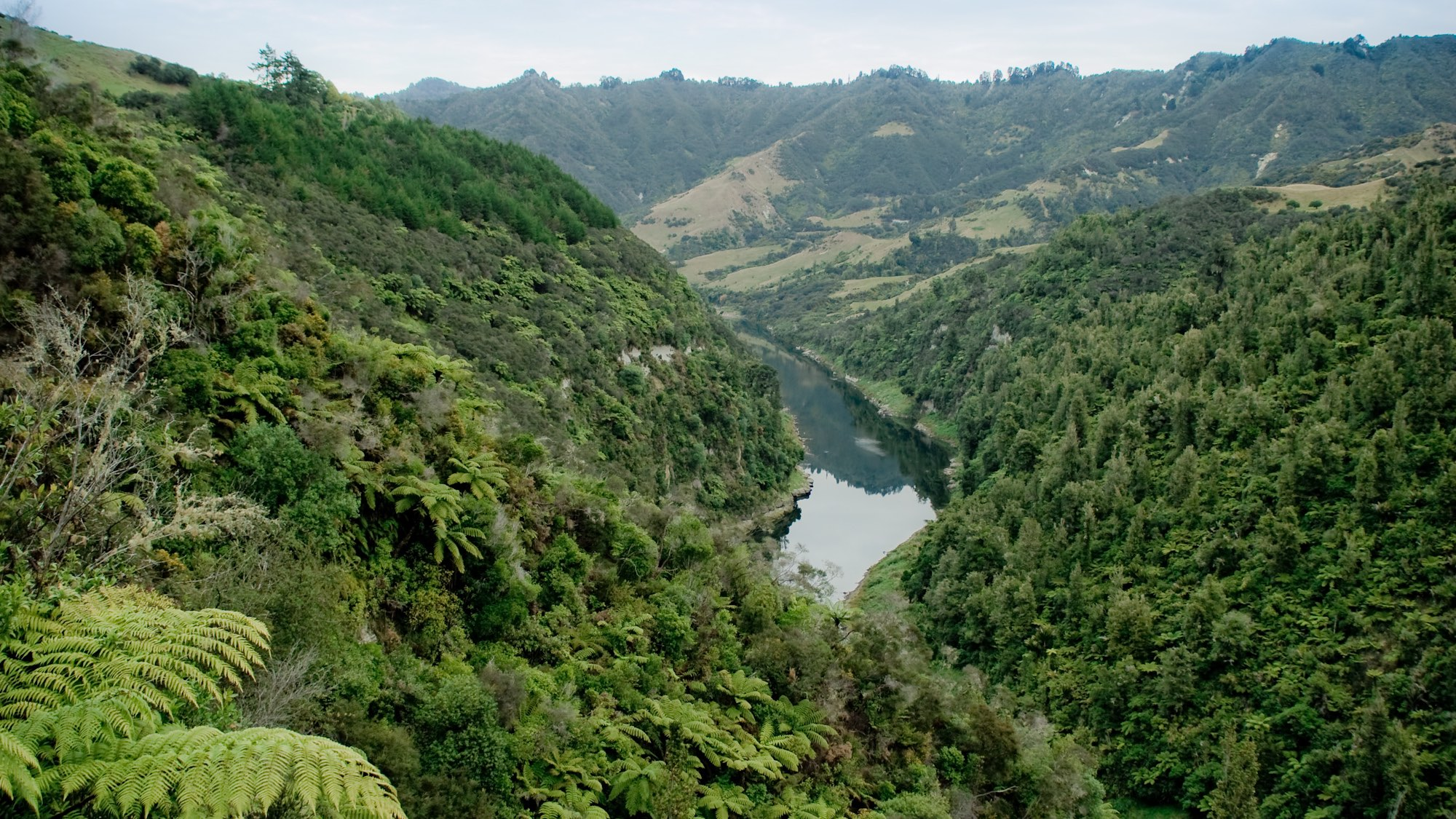 New Zealand's Whanganui River